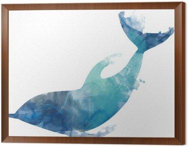 Framed Canvas Dolphin