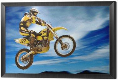 Framed Canvas high flyer