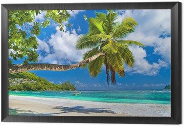 Framed Canvas idyllic tropical scenery - Seychelles