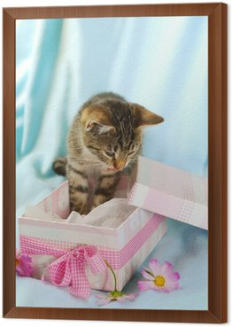 Kitten in gift box wall mural pixers we live to change kitten in gift box framed canvas negle Choice Image