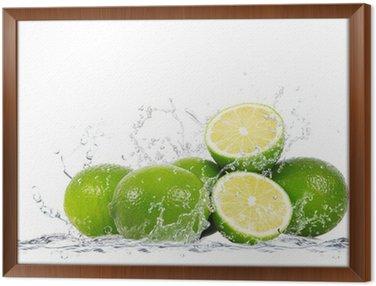Framed Canvas lime splash