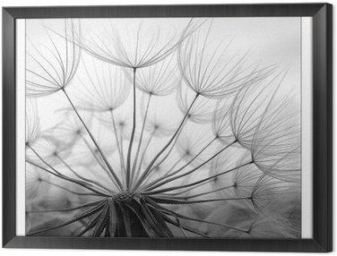 Framed Canvas luftigkeit