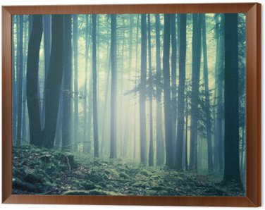 Magical blue green saturated foggy forest trees landscape. Color filter effect used. Picture was taken in south east Slovenia, Europe. Framed Canvas
