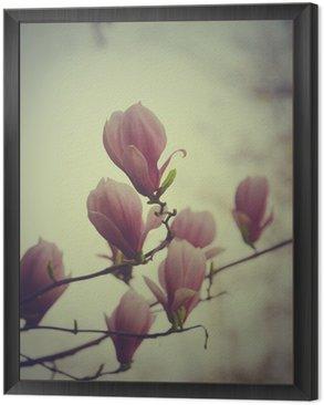 Framed Canvas Magnolia