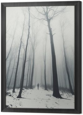 Framed Canvas man in forest with tall trees in winter