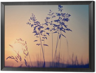 Framed Canvas Meadow at sunset, zen meditative scene