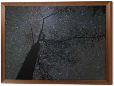 Framed Canvas Milky way landscape