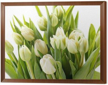 nice tulips Framed Canvas