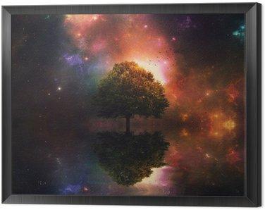 Framed Canvas Night sky and tree