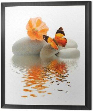 Framed Canvas Papillon galet