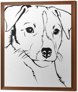 Parson Jack Russel Terrier Framed Canvas