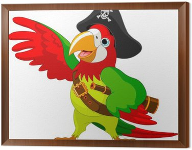 Pirate Parrot Framed Canvas