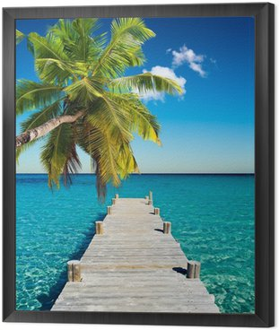 Framed Canvas plage vacances cocotier