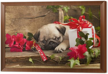 Pug puppy and gift box wall mural pixers we live to change pug puppy and gift box framed canvas negle Choice Image
