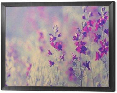 Framed Canvas purple wild flowers