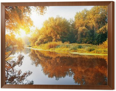 River in a delightful autumn forest Framed Canvas