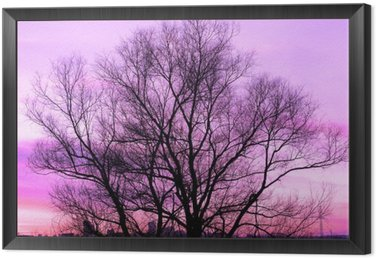 Framed Canvas Silhouette of a big old tree on beautiful sunset violet background retro filtered
