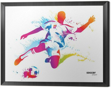 Soccer player kicks the ball. The colorful vector illustration