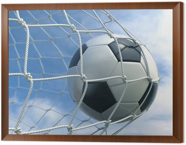 Framed Canvas Soccerball in net