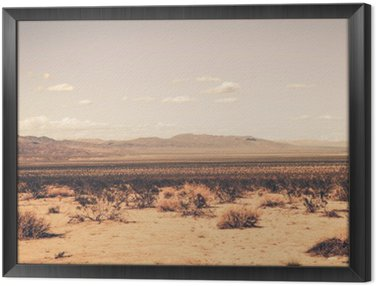 Framed Canvas Southern California Desert