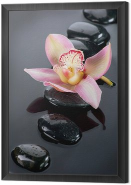 Spa Stones and Orchid Flower over Dark Background Framed Canvas