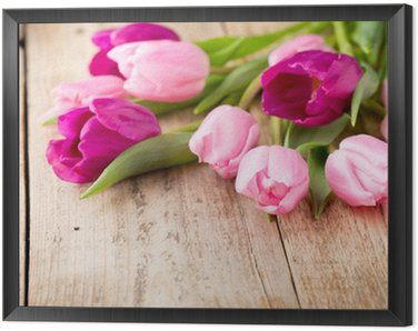 Tulip.