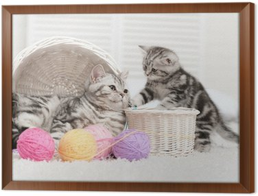 Two cats in a basket with balls of yarn Framed Canvas