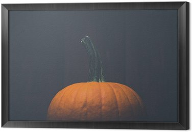 Vintage style pumpkin Framed Canvas