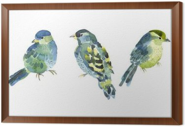Watercolor bird collection for your design. Framed Canvas