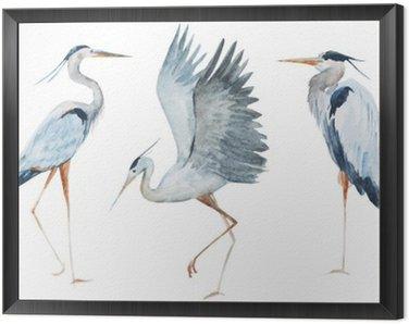 Watercolor heron birds