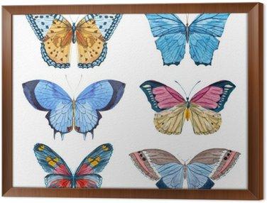 Framed Canvas Watercolor vector butterflies