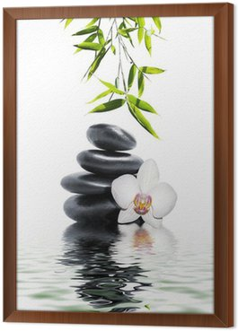 Framed Canvas white orchid flower end bamboo