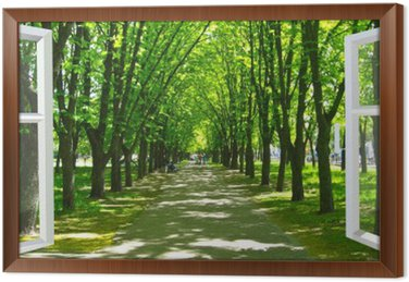 Framed Canvas window opened to the beautiful park with many green trees