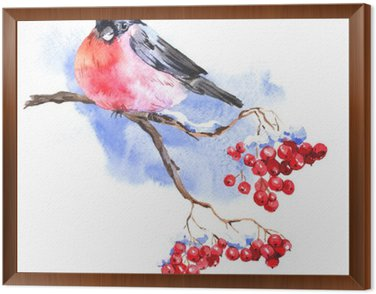 Framed Canvas Winter Watercolor background with bullfinches