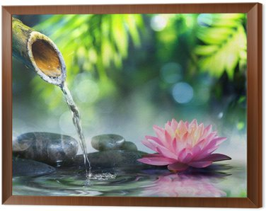 Framed Canvas zen garden with black stones and pink waterlily