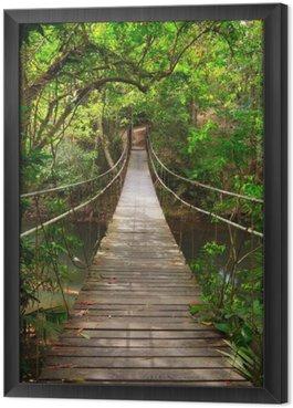 Gerahmtes Leinwandbild Brücke zum Dschungel, Khao Yai Nationalpark, Thailand