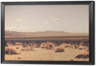 Gerahmtes Leinwandbild Southern California-Wüste