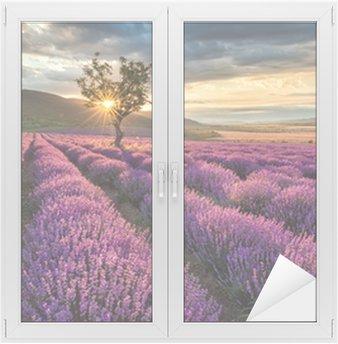 Glas- och Fönsterdekorer Bedövning landskap med lavendel fält på soluppgången