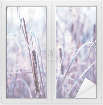 Glas- och Fönsterdekorer Växter täckt med rimfrost