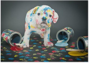 HD Poster Painted Pooch