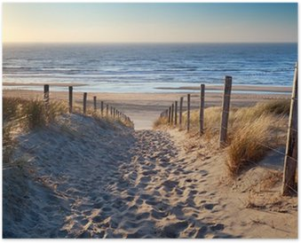 HD Poster Weg zum Nordseestrand in Gold Sonnenschein