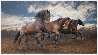 HD Poster Wilden Sprung Bucht Pferde