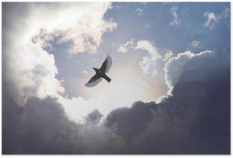 HD Poster Ängelfågel i himlen