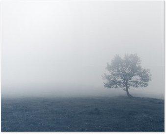 HD Poster Eenzame boom met mist