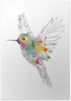 HD Poster Hummingbird