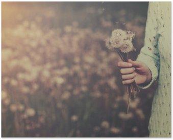 HD Poster Kvinna med gäng maskros blommor i handen