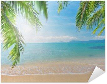 HD Poster Palm och tropisk strand