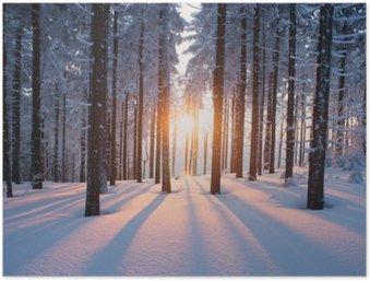 HD Poster Solnedgång i trä i vintern