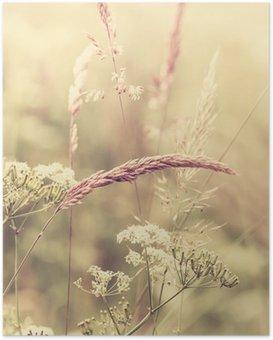 HD Poster Summer Meadow