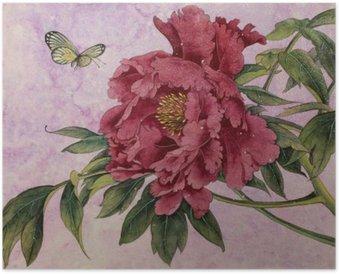 HD Poster Zachte pioen en vlinder